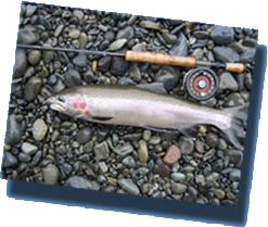 Halgazdálkodás - horgászvíz-kezelő